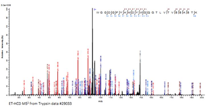 抗体CDR3区测序